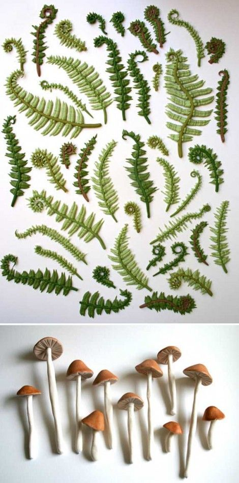 Edible sugar ferns and 'shrooms for decorating your cakes or cookies