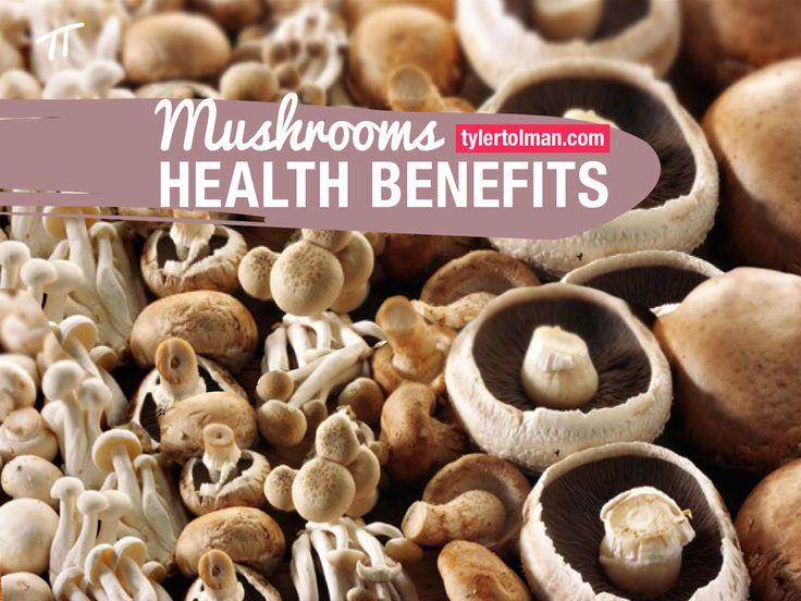 Pilze und ihre gesundheitlichen Vorteile insbesondere für Schilddrüsenprobleme