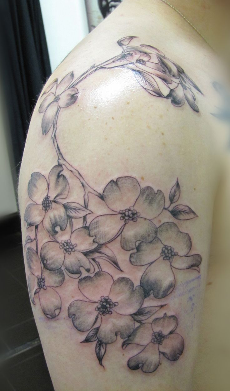 best 25 dogwood flower tattoos ideas on