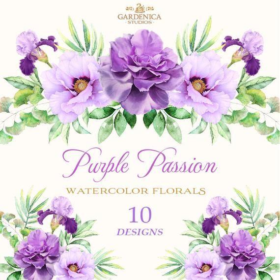 Watercolor Flowers Clipart Watercolor Purple Flowers Purple