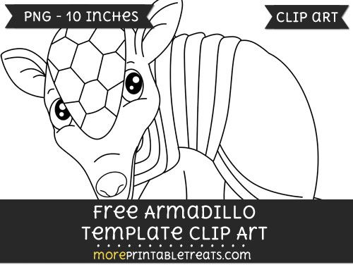 free armadillo template clipart free clipart files