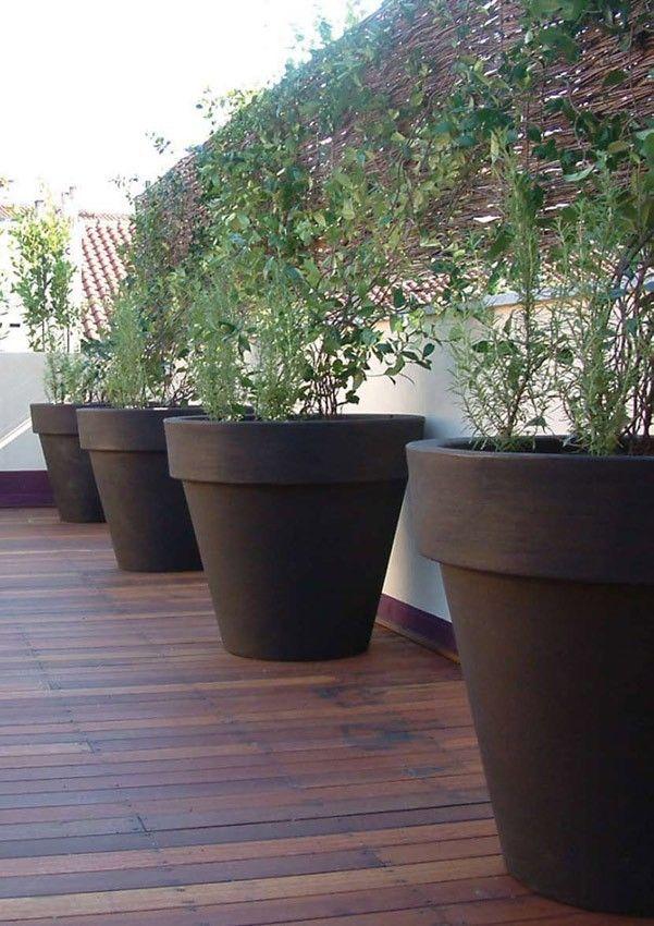 Bordato Liscio Xxl Pflanzgefass Grosse Gartentopfe Topfgarten Pflanzen