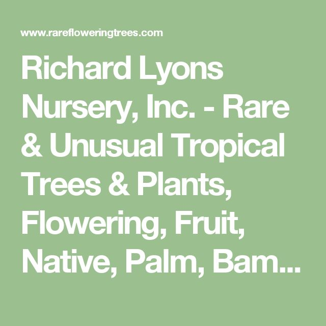 Richard Lyons Nursery, Inc. - Rare & Unusual Tropical Trees & Plants, Flowering, Fruit, Native, Palm, Bamboo, Heliconia, Hummingbird, Butterfly