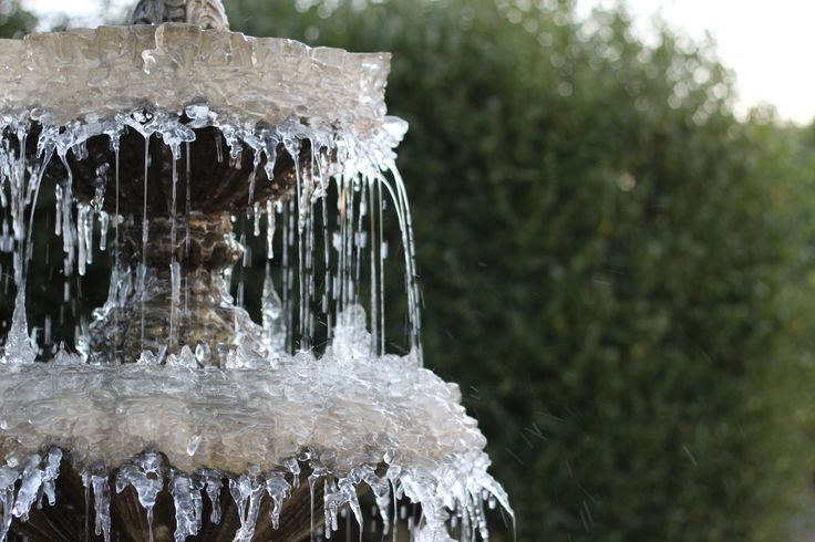 Frost 20-01-15 Bransgore, Dorset, England