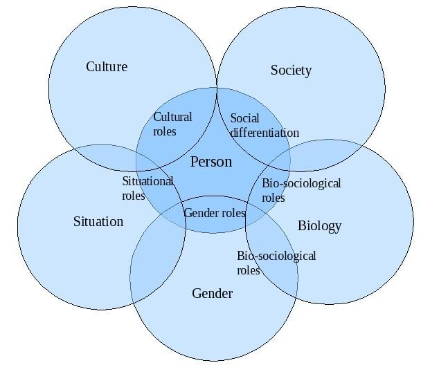 structural functionalist perspective of the aging process As a functionalist theory, this framework casts the process of disengagement as  necessary and beneficial to society, as it allows the social.