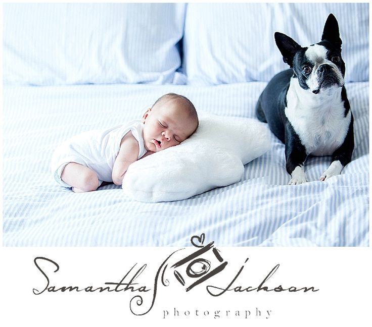 Newborn session at clients home www.samanthajacks... Professional Cape Town Newborn Photographer Studio based in Cape Town, Table View. Lifestyle newborn sessions - all natural light and natural poses
