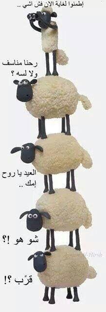 DesertRose,;,Haha, eid Mubarak,;,