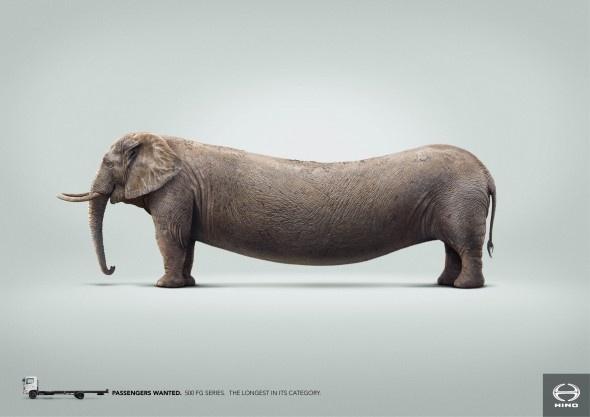 Hino Trucks: Elephant