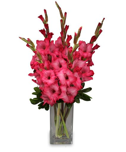 FILLED WITH GLADNESS Gladiolus Bouquet......my mom's favourite arrangement and her fav flower