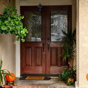 Double Entry Doors With Glass Inserts