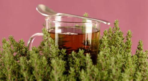 Soignez le vertige, le lupus, la fibromyalgie, l'arthrite, la fatigue chroniques et beaucoup d'autres maladie grâce à une seule plante !