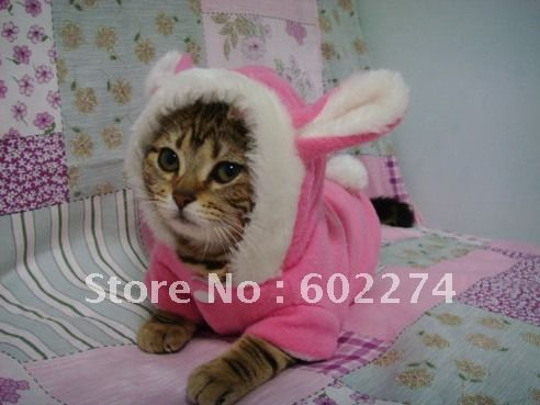 cat clothes patterns Reviews - Online Shopping Reviews on cat ...