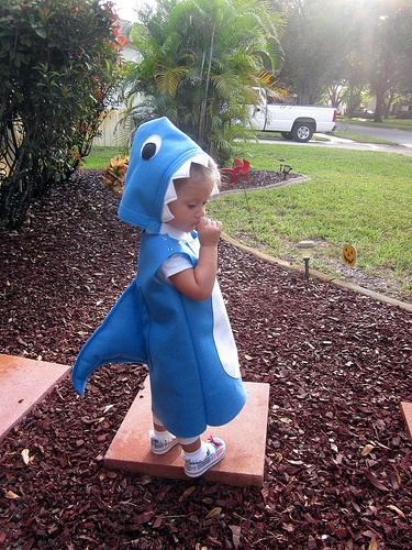 blue shark. Some darling little kiddos halloween costumes. Including a very unhappy ladybug!