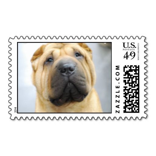 >>>Hello          Cute Shar Pei Postage Stamp           Cute Shar Pei Postage Stamp We provide you all shopping site and all informations in our go to store link. You will see low prices onHow to          Cute Shar Pei Postage Stamp please follow the link to see fully reviews...Cleck Hot Deals >>> http://www.zazzle.com/cute_shar_pei_postage_stamp-172217349689858234?rf=238627982471231924&zbar=1&tc=terrest