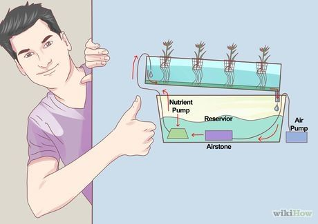 how to build a simple hydroponic garden