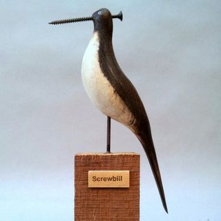 #Screwbill #JeffSoan Last day of #BeetlesBugsBirds tomorrow but not the last of Jeff Soan in the Gallery