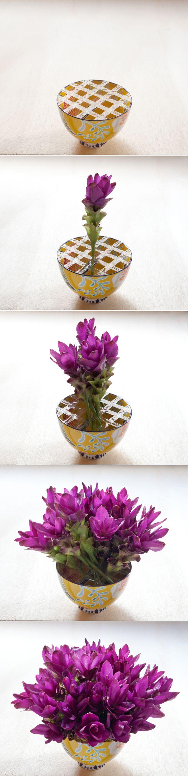 Pitadas das boas para quem gosta de deixar a casa mais florida.