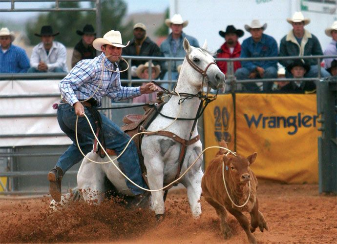 Clark County Fair & Rodeo, April 10-14, Logandale NV, near Valley of Fire State Park. It would, in fact, be my first time at the rodeo.