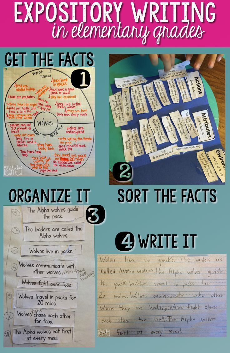 Information about essay