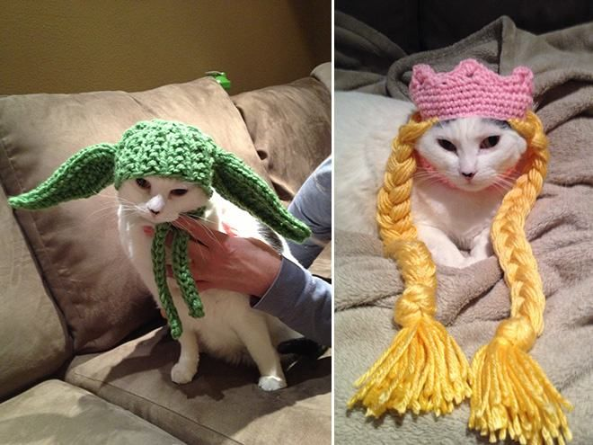 18 Animals Wearing Adorable Crochet Hats | Pleated-Jeans.com