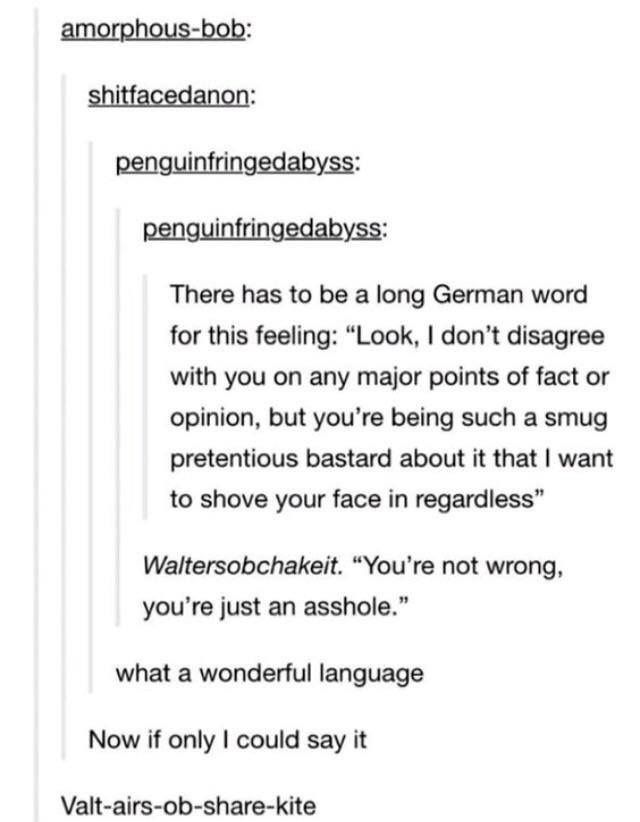 Pin By Anita Hart On Amusing Words Tumblr Funny Longest German Word