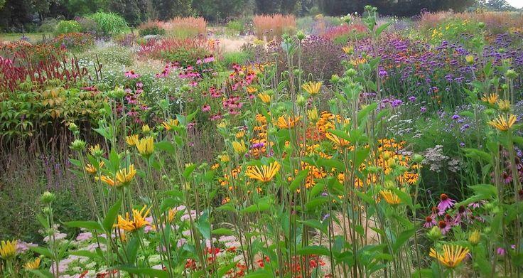 75 best images about piet oudolf james van sweden for Planting the natural garden piet oudolf