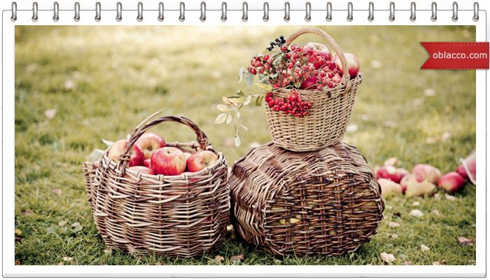 Корзина садовая плетеная из газетных трубочек