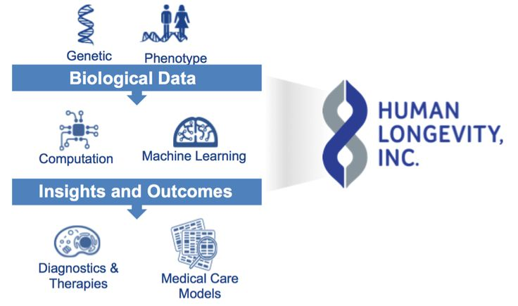 HlI - Biological Data