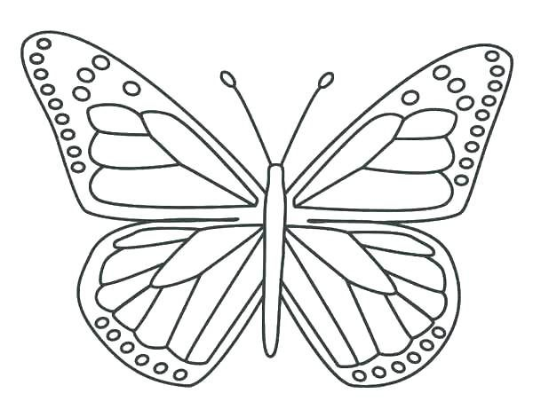 Cool Butterfly Coloring Pages Ideas For Girls And Boys