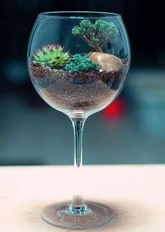 Em recipientes transparentes de vidro, acrílico ou plástico, os terrários são verdadeiros mundos em miniatura