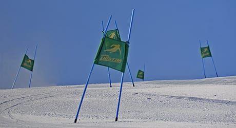 Ski Racing   Boyne Highlands Resort