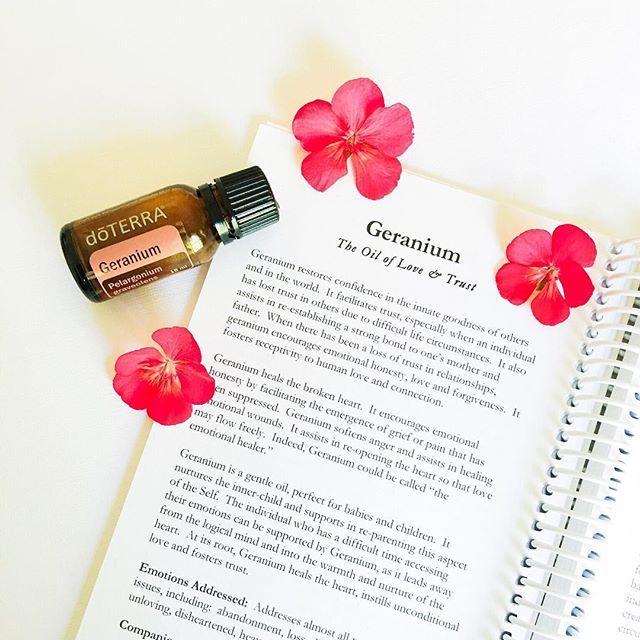 Bilderesultat for geranium essential oil doterra