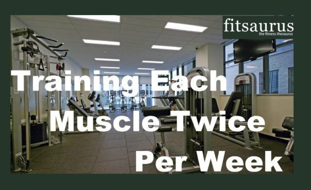 The three pillars of bodybuilding are nutrition, training and recovery. They are dedicated for one ultimate goal that is muscle growth. Here is why training each muscle group twice a week yields faster results.