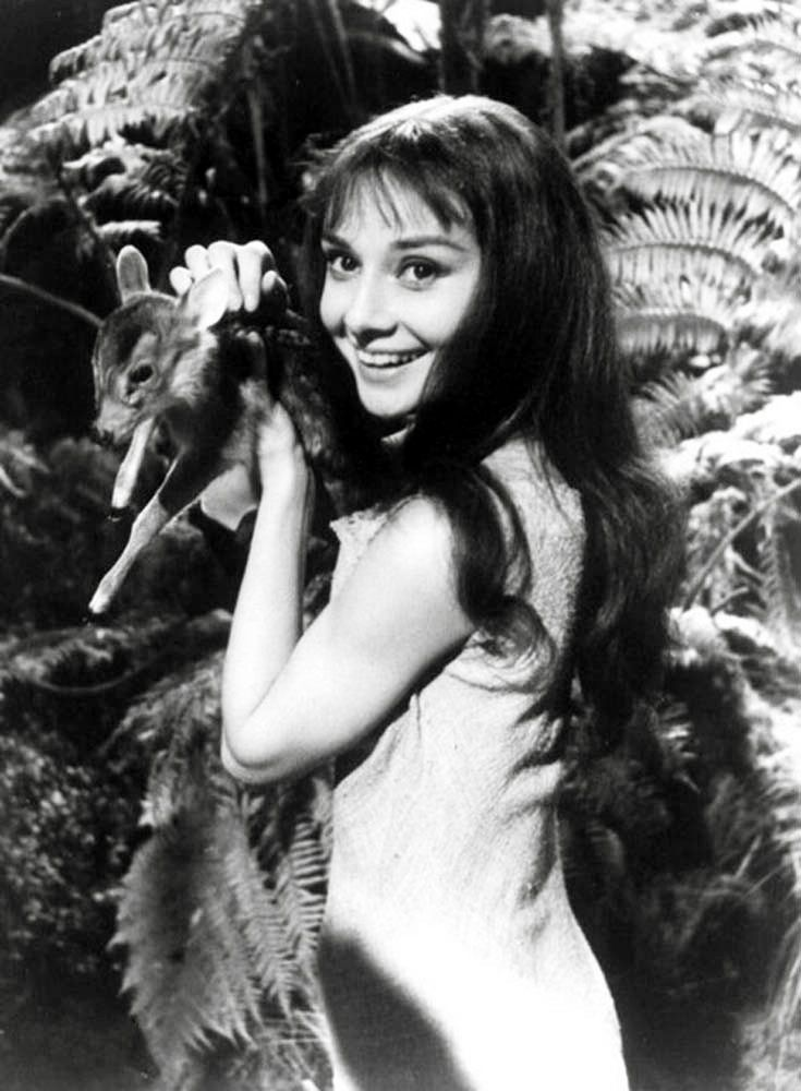Audrey Hepburn and her pet fawn Ip photographed on the set of Green Mansions, 1959.... Re-pinned by StoneArtUSA ~ pet memorials since 2001