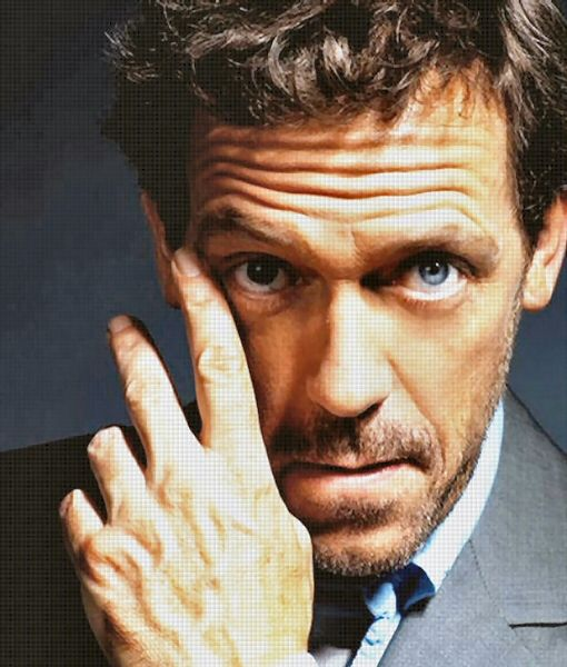 Hugh Laurie. Absolutely love this man. He is the most fantastic actor ever. And hes British. Perfection.