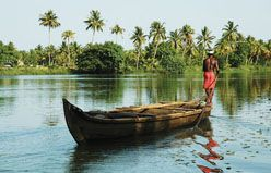 Spice Lands of Kerala (Superior)