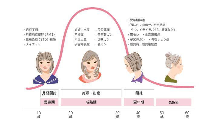 女性のライフサイクルと女性ホルモンの関係