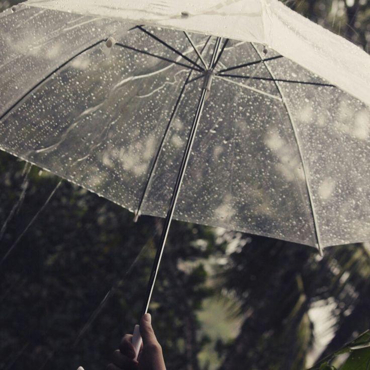 Payung hujan #edisipopotoan#photography#hujan#ebotphotography