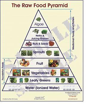 The Raw Food Pyramid - Algae on the top!