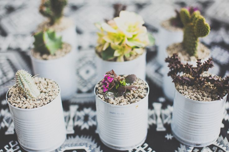 #weddingdetails #cactus #minicactus #Mexicanstyle #wedding  'Mexican-inspired' wedding shoot. Styling by @placesandgraces. Flowers by @beaufloral. Photography by @capturedbykeryn