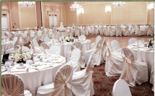 This is the website for a great company that rents table linens, table runners, chair covers, sashes and napkins for your wedding. they ship nationwide. Table Linens, Party Rentals, Chair Covers, T-rriffic Table Linens and Chair Covers, Columbus, OH