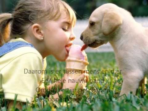 Iets van alle dieren - Marcel en Lydia Zimmer