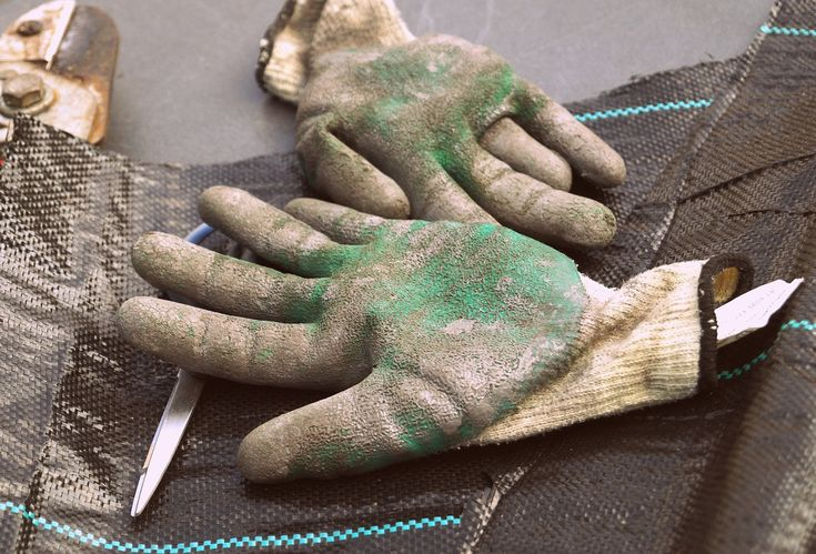 Best Chainsaw Gloves & Tree Climbing Gloves: Buyer's Guide & Reviews