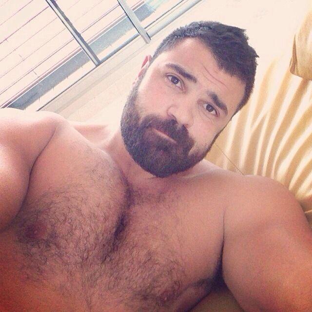 Hot Beard Gay