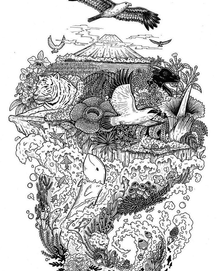The beauty of Indonesia. Dirgahayu Indonesia 😊  This is my old illustration about flora and Fauna of Indonesia. It is for an awareness of nature preservation.  Can you guess the flora and fauna in this doodle illustration? I'll help you :) Fauna: Elang Bondol, Harimau Sumatera, Jalak Bali, Anoa, and Pesut Mahakam.  Flora: Anggrek Bulan, Suweg Raksasa, Melati, Matoa, Cengkeh, and Padma Raksasa.