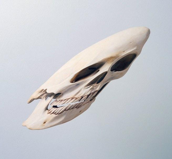Robert Lazzarini, Skull, 2000: Portraits Galleries, The Artists, 200 Cm, 2000 Resins, Artists Inspiration, Skullbi Robert, Robert Lazzarini, Lazzarini Skull, 350