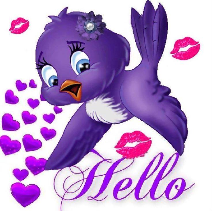Hello little purple bird