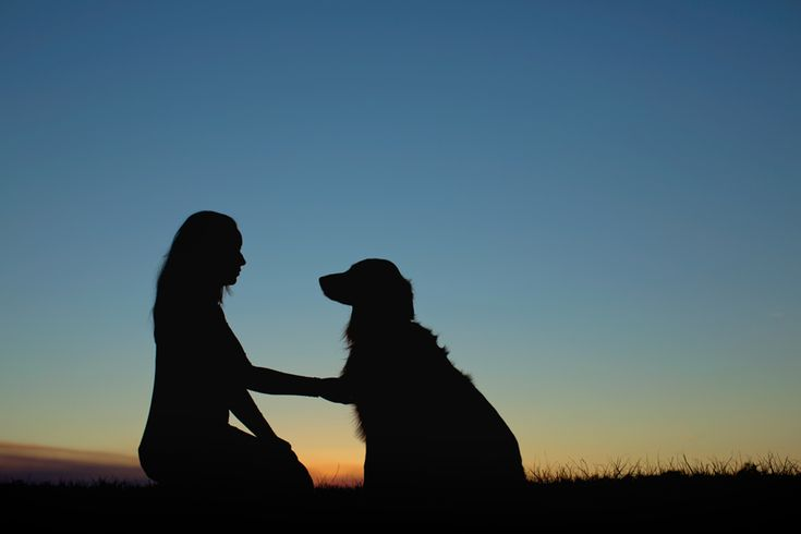 girl with her dog silhouette photography - elizabethbirdwell.com