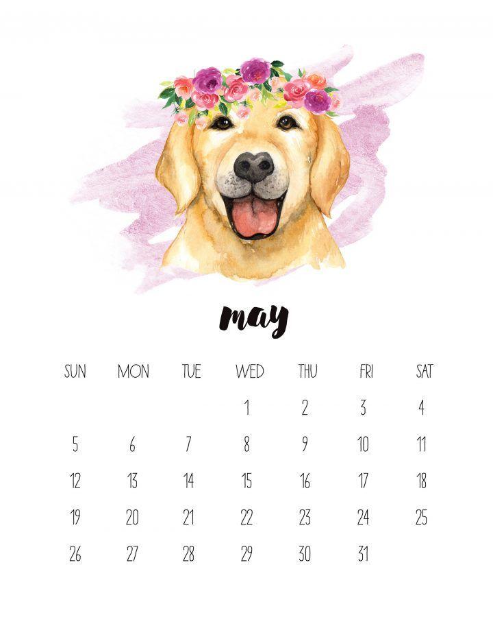 Free Printable 2019 Watercolor Animal Calendar May Calendar