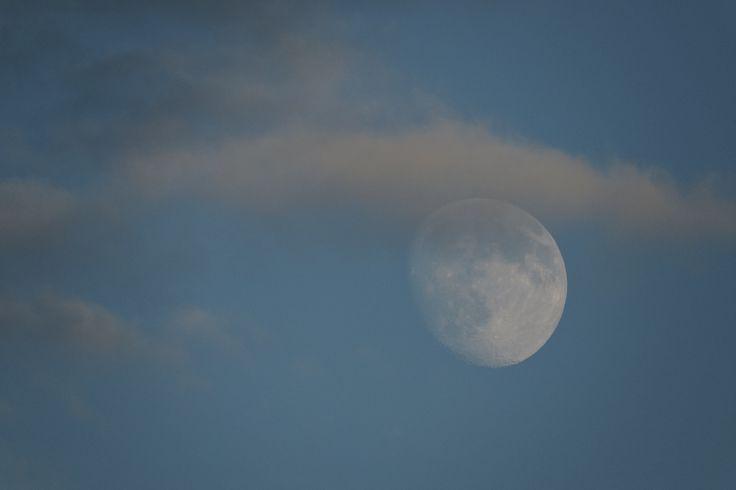O espetáculo Foresta Lumina acontece durante a super lua.